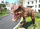 Robot T Rex Outdoor Dinosaur With Mouth Open And Close / Eyes Blink